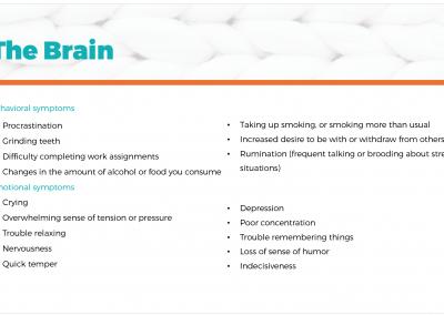 HEALTHY GUT PREVIEW brain
