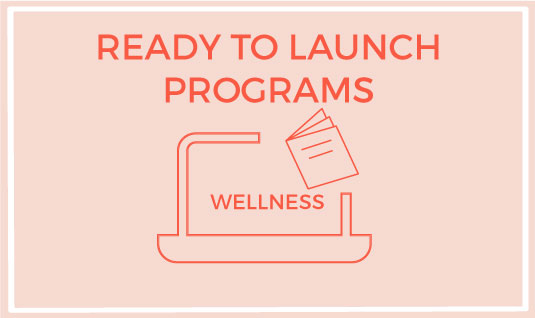 ready to launch programs packages